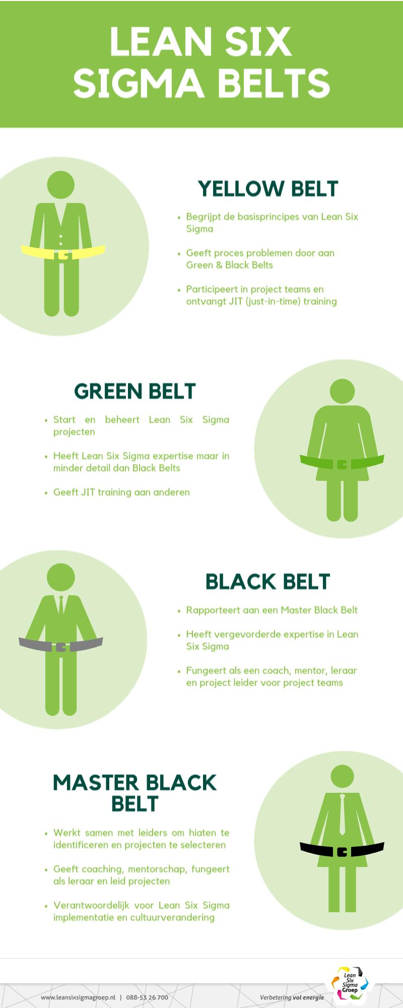 Lean Six Sigma Belts Rollen